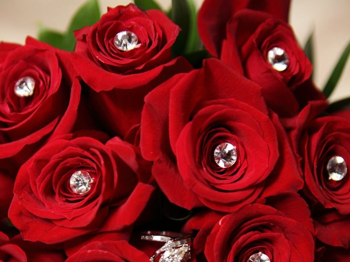 Tmx 1509980533491 038 Copy Lodi, New Jersey wedding florist