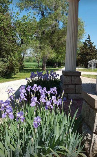Flowers around the Estate
