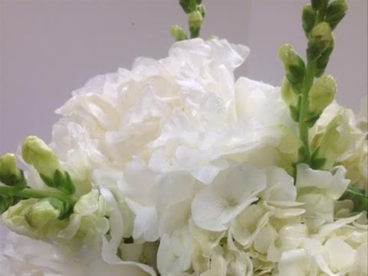 Tmx 1474058025256 Elaines Flower Shop 18 Depew, NY wedding florist