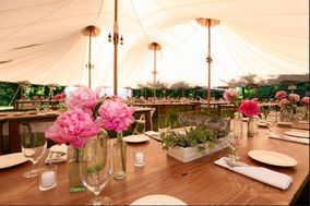 Daley Event Rentals