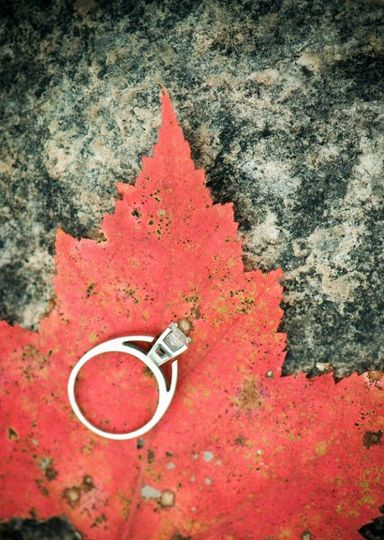 Engagement1001