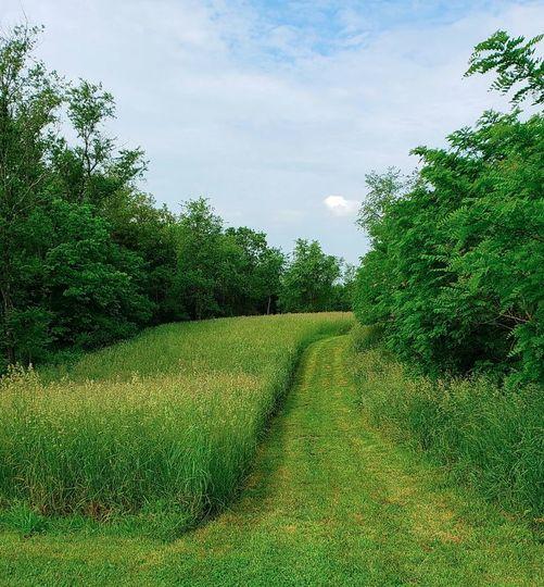 Meadowland trail