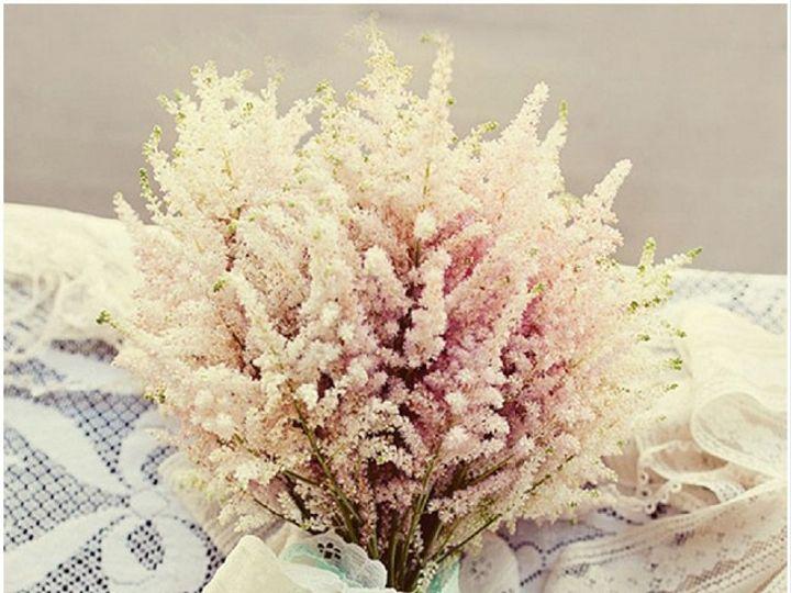 Tmx 1467389201737 Astilbe Pasadena, Maryland wedding florist
