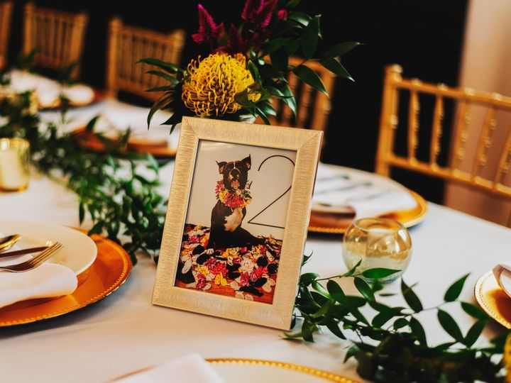 Tmx Benckendor Thesilverfox Streator Wedding 0217 51 978307 1558551898 Villa Park, IL wedding photography