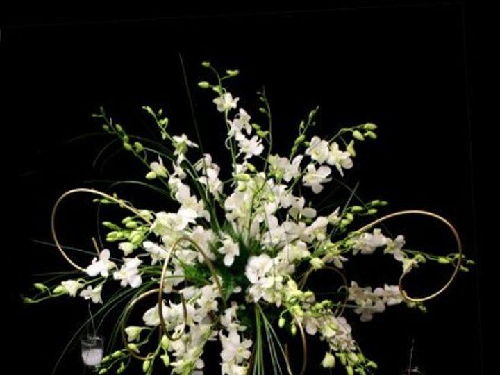 Tmx 1317232713734 Dendrobear Haledon, New Jersey wedding florist