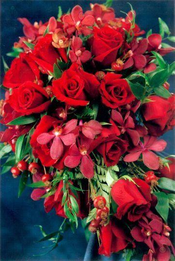 Tmx 1317233178453 Rosemakara Haledon, New Jersey wedding florist