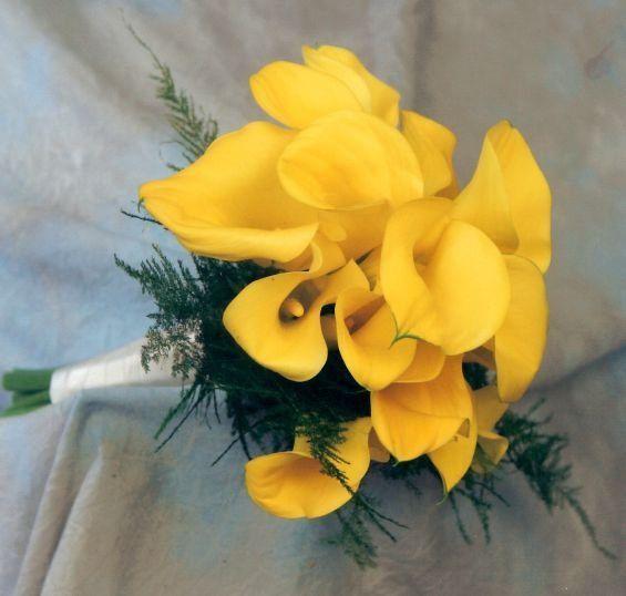 Tmx 1317233179281 Yellowcalls1 Haledon, NJ wedding florist