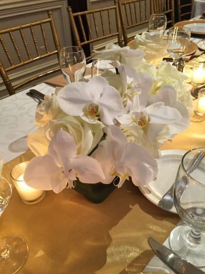 Tmx 1439234282810 Img4737 Haledon, NJ wedding florist