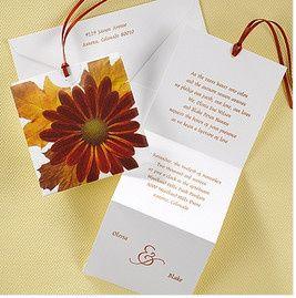 Tmx 1452538302890 Screen Shot 2016 01 11 At 1.43.54 Pm Philadelphia, Pennsylvania wedding invitation