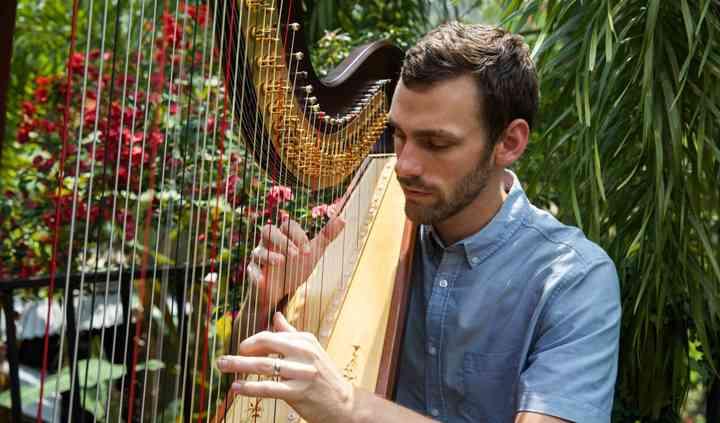 The Coastal Harpist