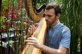 The Coastal Harpist