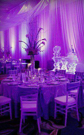 Tmx 1297199949913 Weddingwire Winter Garden wedding planner
