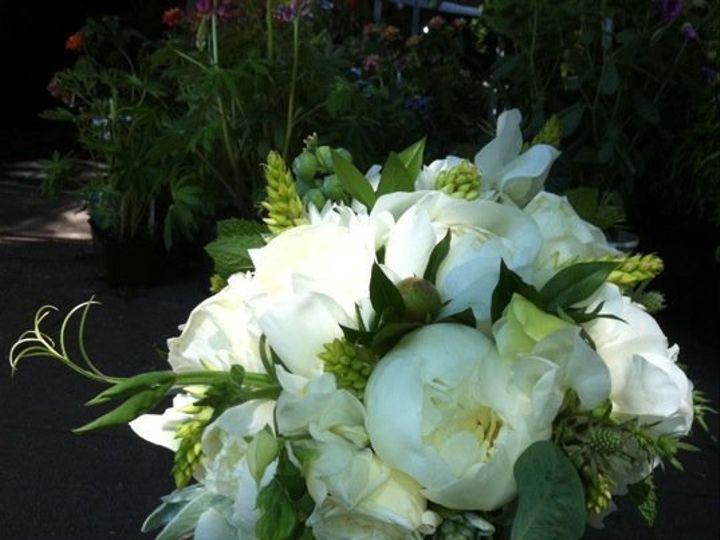 Tmx 1362612028510 Whitepeony Portland wedding florist