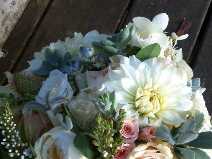 Tmx 1362612200585 Creamsucculentspink Portland wedding florist