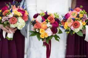 Katydid Flowers