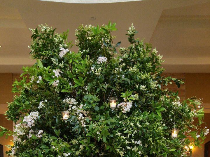 Tmx 1490735704334 20160625173610 Athens, New York wedding florist
