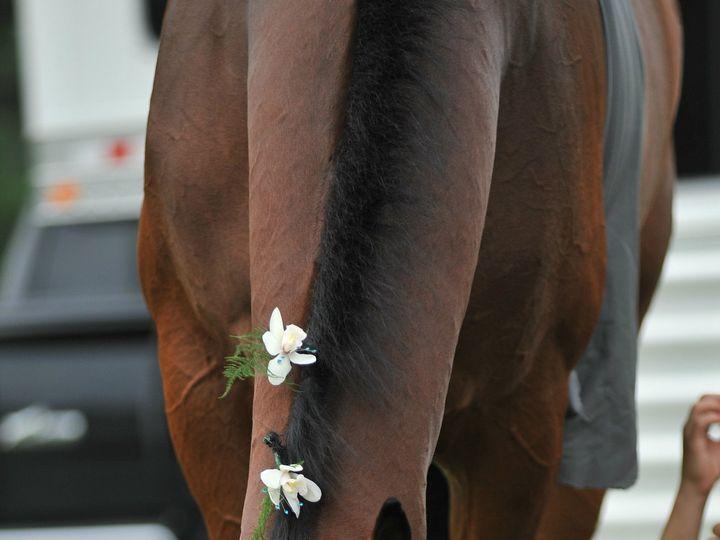 Tmx 1490799071977 Jmi4781 Mod Athens, New York wedding florist
