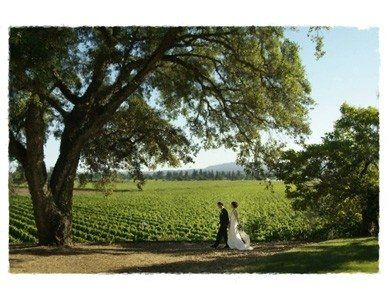 Hold your ceremony under a huge oak tree with vineyards as a backdrop.