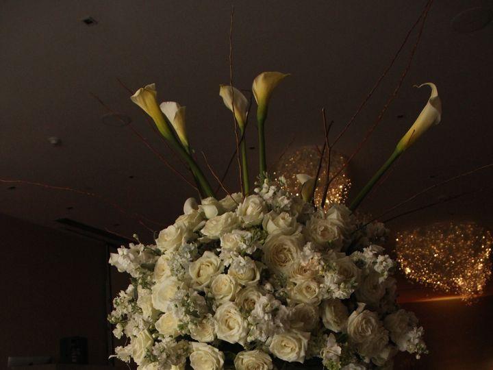 Tmx 1443211598291 Bd Ale Y Lalo 157 Mexico City, MX wedding planner