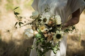 Lily and Juniper Blooms and Design