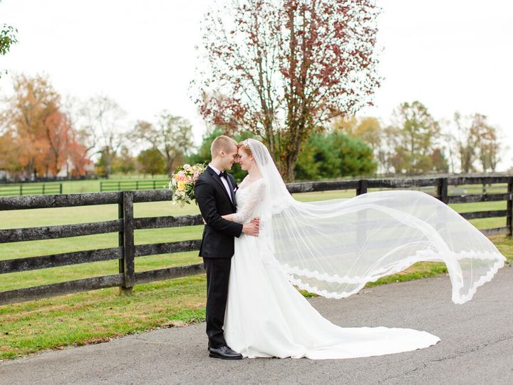 Tmx Wedding Photos Manor At Airmont Veil Blowing In Wind 51 1015707 160088461583120 Round Hill, VA wedding venue