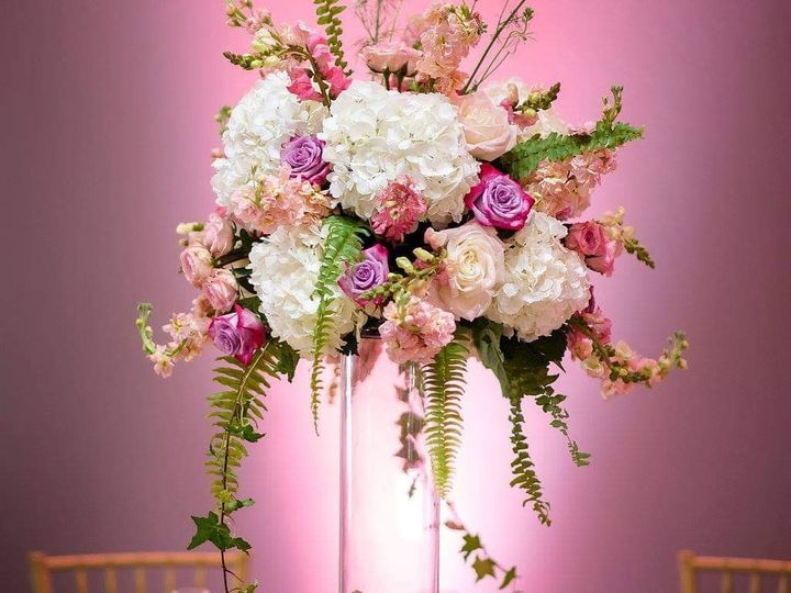 Tmx Img 20190430 043652 635 51 45707 1557267421 Palm Harbor, FL wedding florist