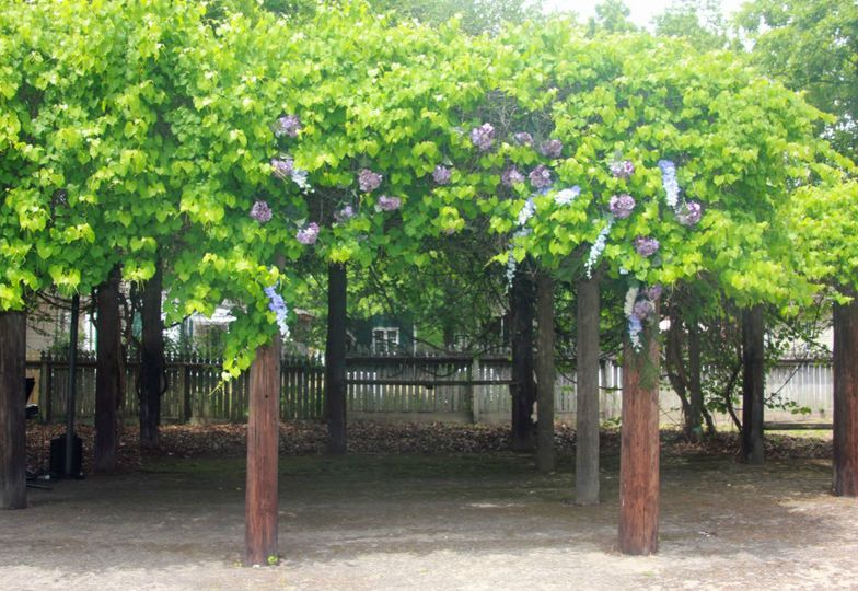 Grape Arbor  310 North Hull Street Rental Fee: $300.00 Seating: 50  Parking: Along East Jefferson...