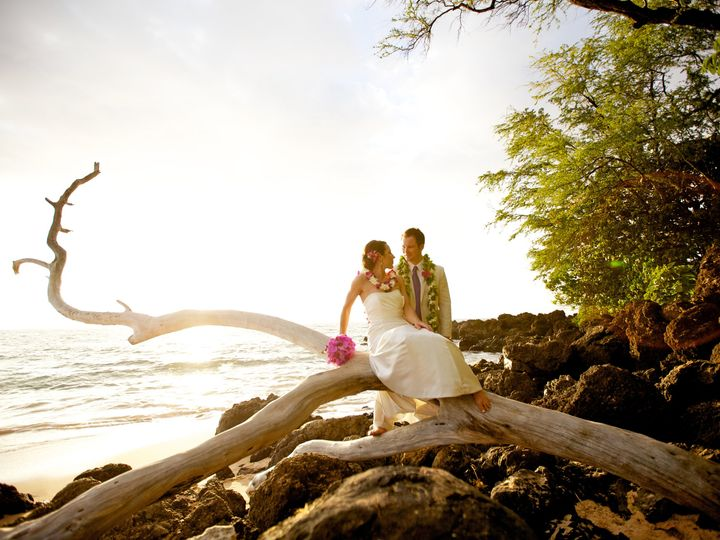 Tmx Shelley Greyson 3947 51 378707 Lahaina wedding planner