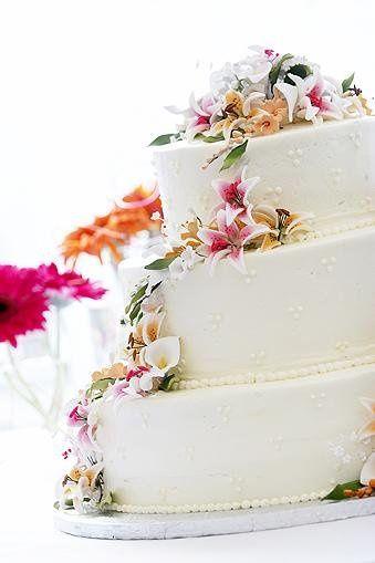 Tmx 1236697180393 Swiss1 Philadelphia wedding cake