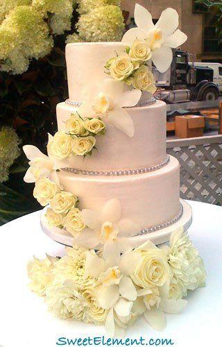 Tmx 1332532693089 Cbsearlyshowweddingcake East Orange wedding cake