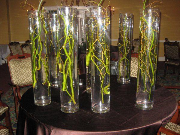 Tmx 1290054668671 IMG1099 Clearwater wedding florist