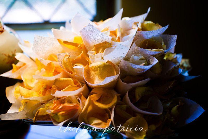 queen annes lace petal cones