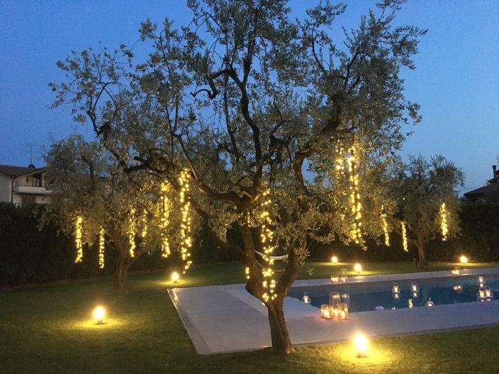 Fairy lights trees
