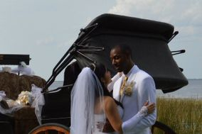 All Hitched Up ~ Horse Drawn Carriages