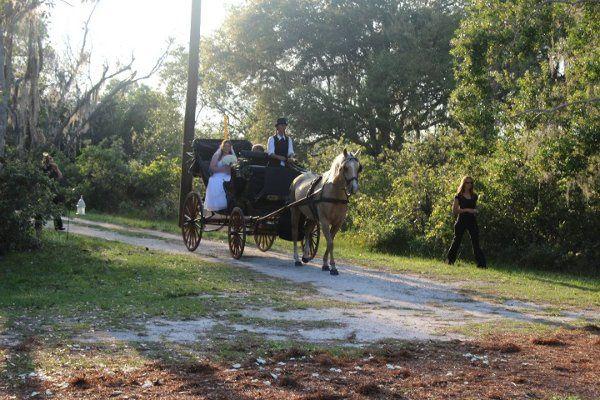 Tmx 1332761846935 CatLakeWedding Saint Cloud wedding transportation