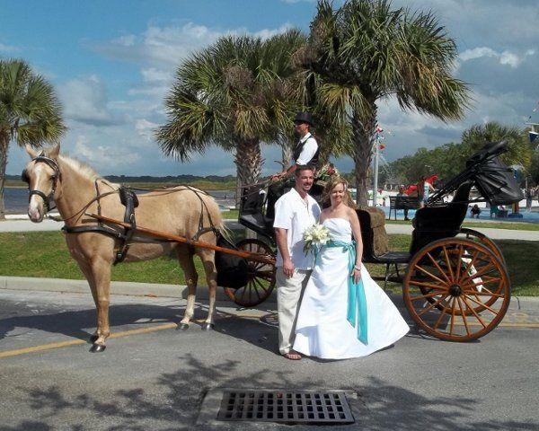 Tmx 1332761850905 Lakefrontwedding640x512 Saint Cloud wedding transportation