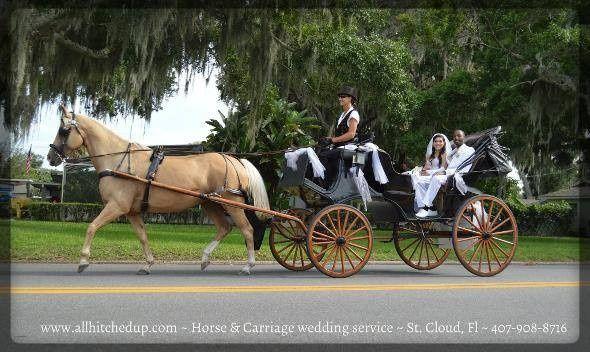 Tmx 1411570998113 Wedding 3 Saint Cloud wedding transportation