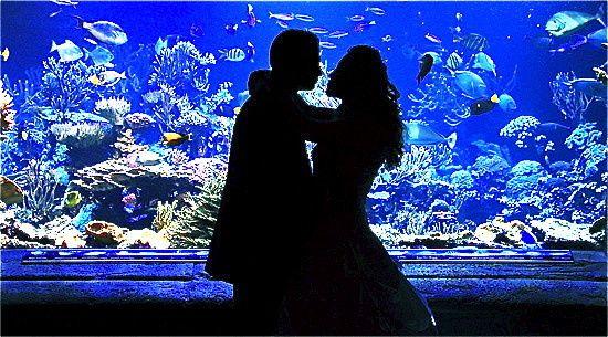 Tmx 1370269443858 Silhouette Kiss At Tank Lighter Riverhead, NY wedding venue