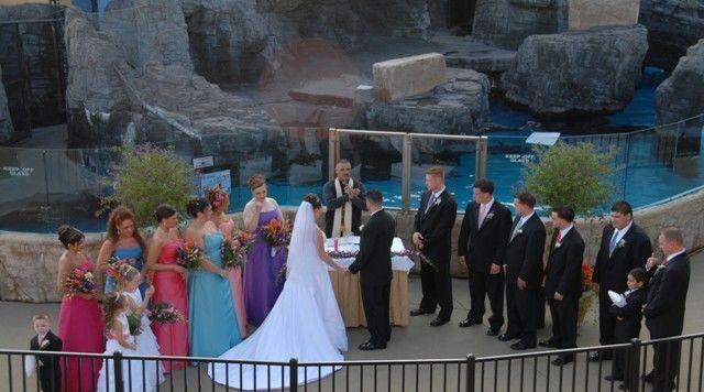 Tmx 1523028580 41dcece918b24427 1523028580 30d03ea269ca9903 1523028549731 1 Atlantis Pictures  Riverhead, NY wedding venue
