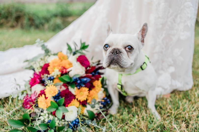 buffalo knox farm richard kaylee wedding 2020 new york kelsee bodine photography 2568 51 1043017 161171194471687