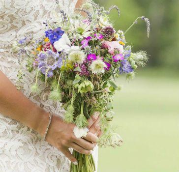 Tmx 1525194029 9dbbb2c1afab111d 1525194029 3aa344191d5df43e 1525194014225 36 Mountain Top Reso Chittenden, Vermont wedding venue