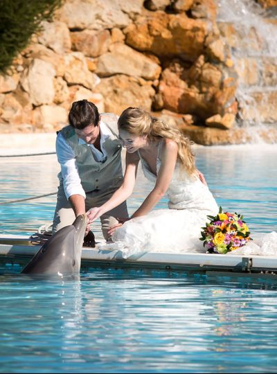 Elopement  with dolphins