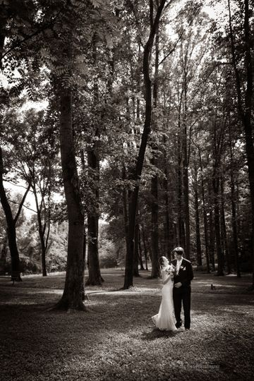 A woodland walk - Cooper's Photography