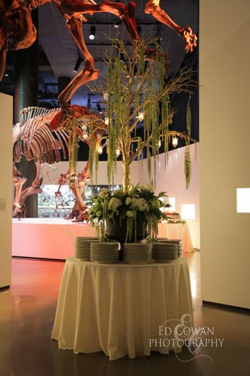 The Houston Museum Of Natural Science Wedding