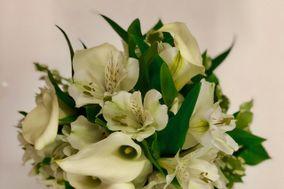 Draeger's Floral