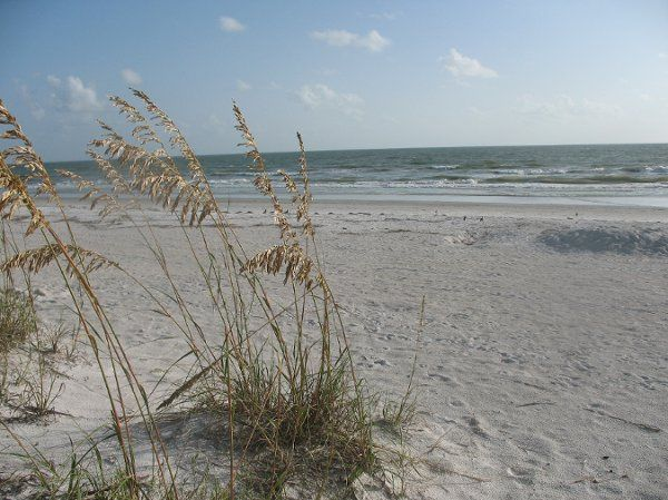 Directly on the Gulf...a beautiful beach for your wedding