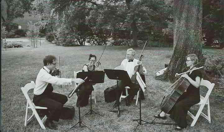 Fine Arts Strings
