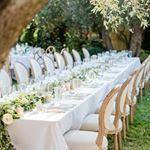 Tmx 47693946 1457558701045150 6329474151577572610 N Napa, CA wedding planner