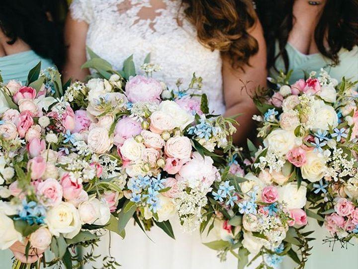 Tmx 49725228 138327750407512 8480012237226749033 N 51 1046117 Napa, CA wedding planner