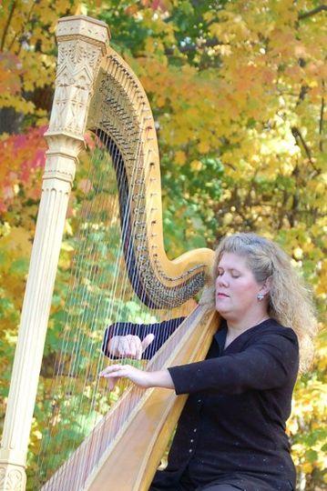 Elizabeth Ahlgrim, Harpist